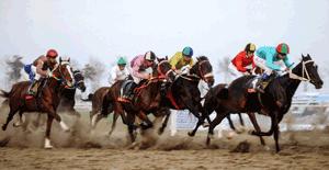 کمیاب ترین لنز کانن برای عکسبرداری اسب دوانی